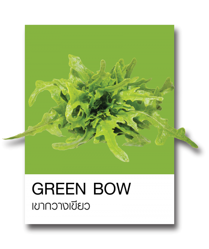 http://www.ohkajhuorganic.com/wp-content/uploads/2017/12/veg-101-420x500.png